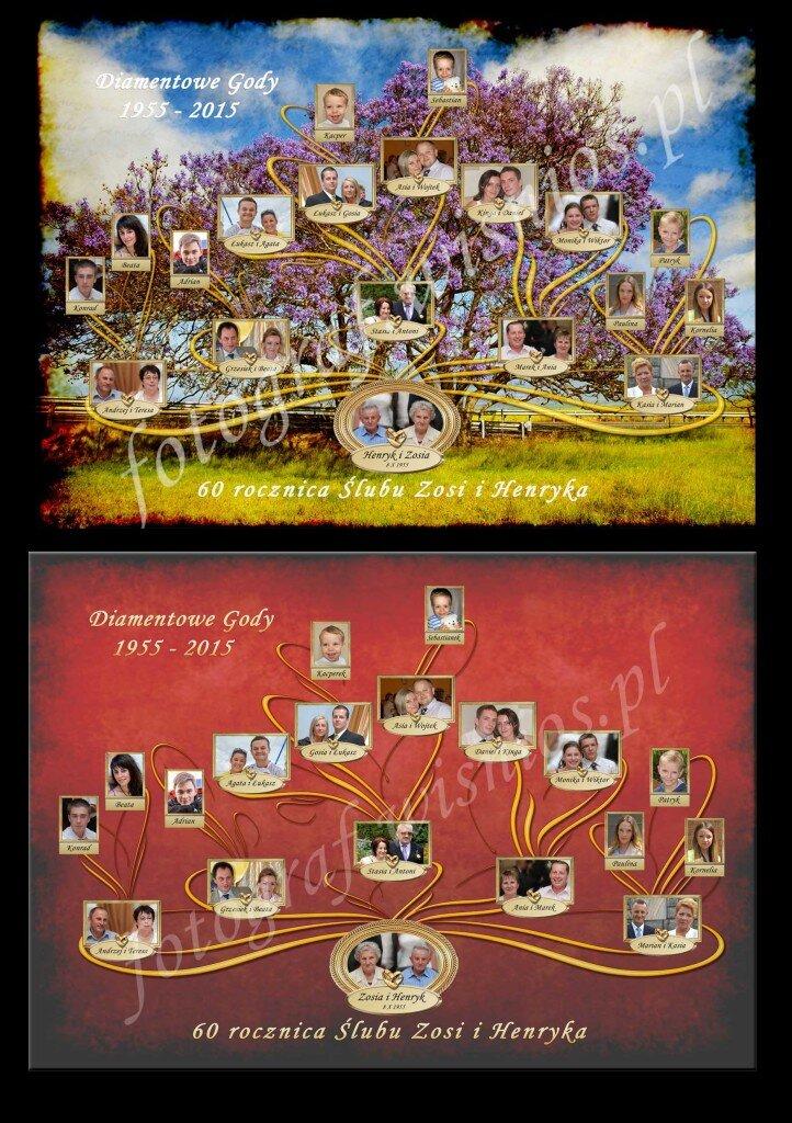 drzewo-genealogiczne-net